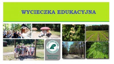 b_400_400_16777215_00_images_stories_zzycia_wycieczki_Borowiny1.jpg